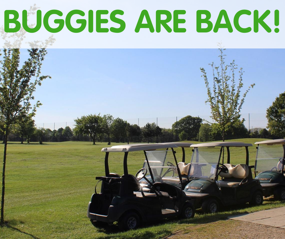 Golf buggies lined up at Little Hay Golf Course